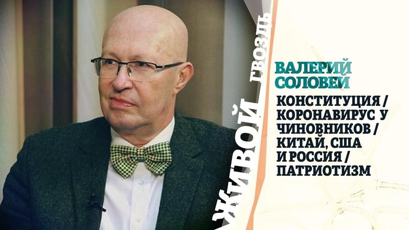 @Валерий Соловей о поправках в Конституцию заболевших COVID 19 чиновниках Живой гвоздь 25 05 20