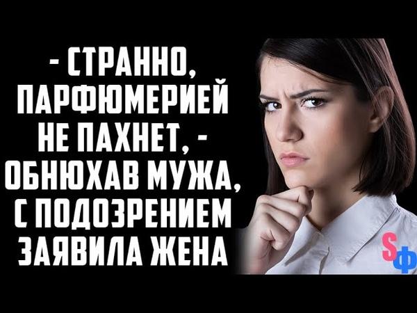 Странно парфюмерией не пахнет жена как собака ищейка обнюхала мужа…