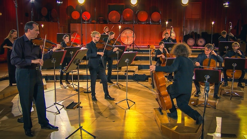 Play and conduct Nicolas Altstaedt | Haydn Ligeti Veress | SWR Symphonieorchester