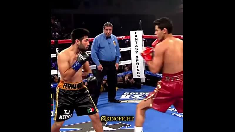 Восходящая звезда профессионального бокса непобежденный 21 летний Райан Гарсия