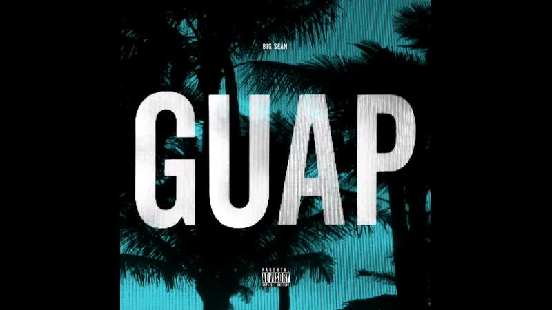 Snippet Guap