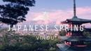 Vindu - Japanese Spring VIP japanese lofi/chillhop