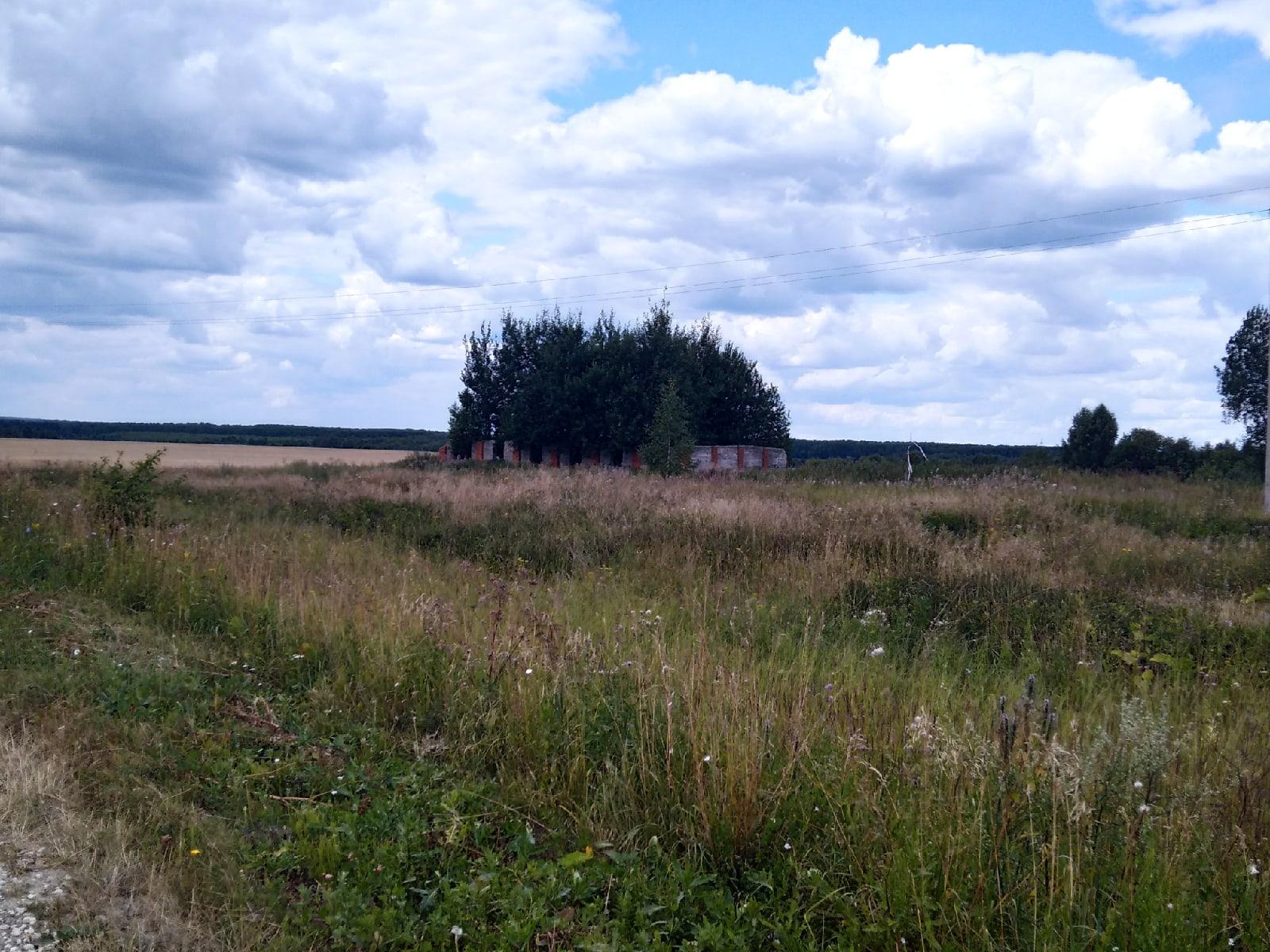 Деревня Веселовка, Юрьев - Польского района, Владимирской области, 2021 - Фото