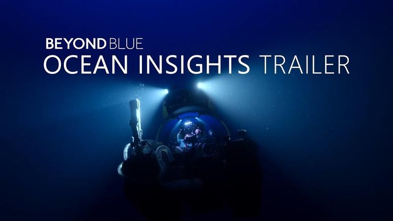 Beyond Blue Ocean Insights Trailer