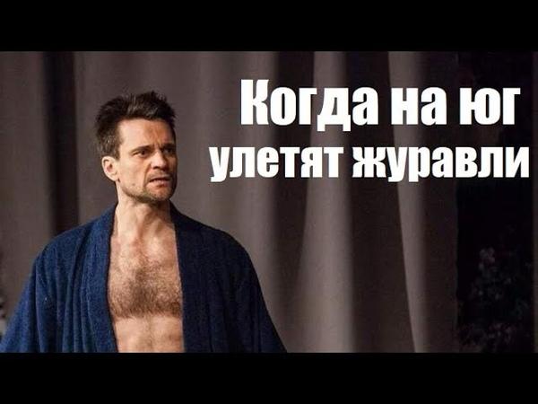 КОГДА НА ЮГ УЛЕТЯТ ЖУРАВЛИ интересная мелодрама русский фильм