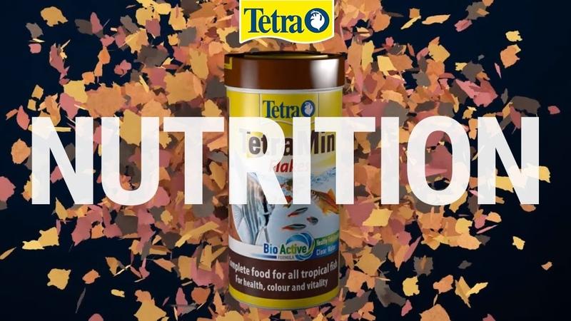 Tetra Лучший выбор Питание