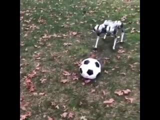 Вот такие мини-роботы играют в футбол. Здорово .mp4