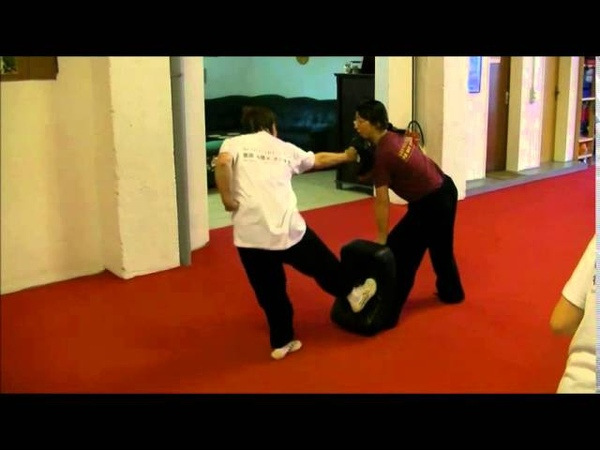 通备武艺 Tongbei Martial Arts - Intensiv Trainingstage 2015 戳脚 Chuojiao with Master She Yinge