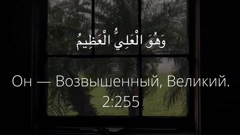 Рукия Ruqya الرقية Идрис Абкар оригинальный текст смысловой перевод часть 1