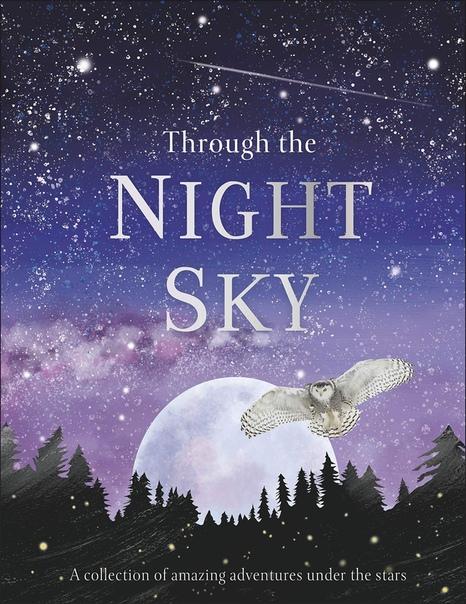Through the Night Sky  - Dorling Kindersley