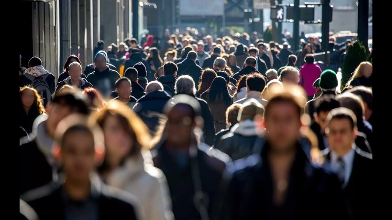 9 7 Политика мораль право религия экономика как формы общественного сознания