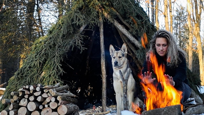 SOLO WINTER OVERNIGHTER in a BUSHCRAFT HUT Coyotes Howl Woken by SNOWSTORM