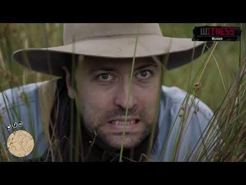 Логика стелса в Red Dead Redemption 2 Укрытие Viva La Dirt League VLDL На Русском языке