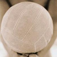 Волейбольник