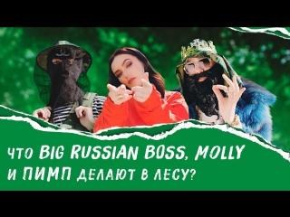 BIG RUSSIAN BOSS feat MOLLY  МНЕ НРАВИТСЯ (ПРЕМЬЕРА КЛИПА)