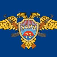 Логотип орг.комитет ЗАРЯ 73