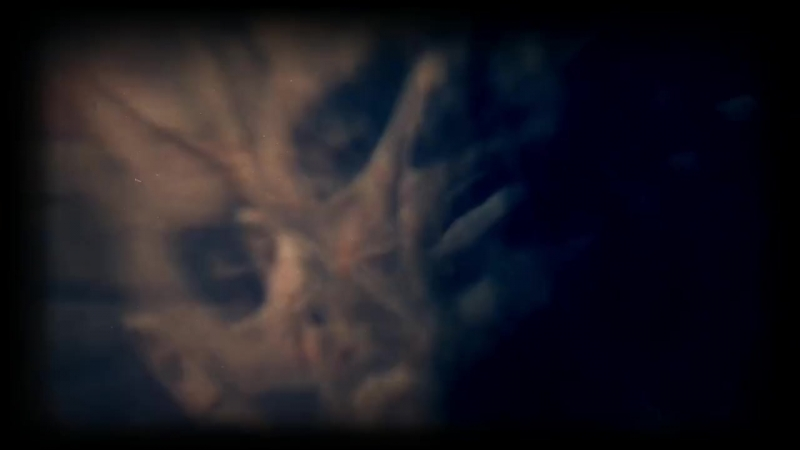 Devilment Sanity Hits A (Perfect) Zero (Official Music Video) 2014.mp4