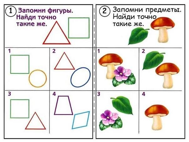 РАЗВИВАЕМ ВНИМАНИЕ, ПАМЯТЬ, ЛОГИЧЕСКОЕ МЫШЛЕНИЕ Внимание, память и логическое мышление можно начинать развивать очень рано. К примеру, вот такие задания можно давать детям уже начиная с 2-3