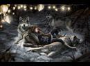 Литературные рассказы Волки спасители Cool russian tales Human was saved by wolfs