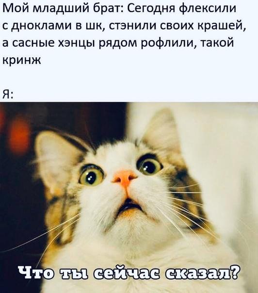 plVs4imnLzQ.jpg