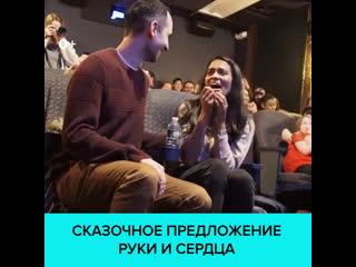 В США режиссёр сделал предложение руки и сердца с помощью мультфильма Спящая красавица  Москва 24