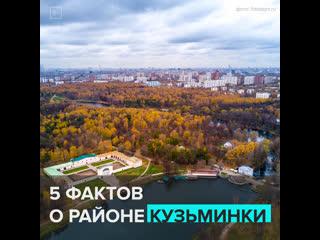 5 фактов о районе Кузьминки  Москва 24