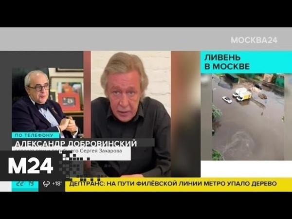 Ефремов не признал свою вину в смертельной аварии Москва 24