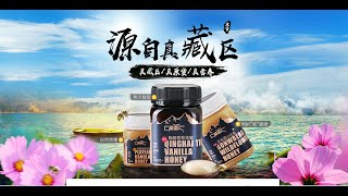 ТИБЕТский ЭКО МЁД 青海藏蜜 原生态蜂蜜 Qinghai Tibetan Honey Original