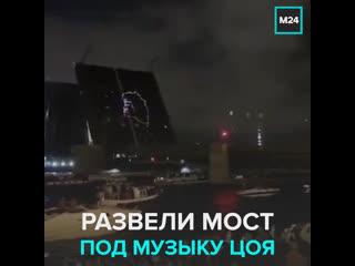 Дворцовый мост развели под музыку Виктора Цоя  Москва 24