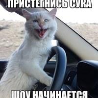 Личная фотография Алексея Шамсутдинова ВКонтакте