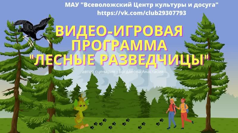 ВИДЕО ИГРОВАЯ ПРОГРАММА Лесные разведчицы