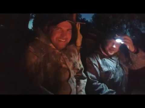 Поиск с Эквинокс 800 2 х дневный выезд в хорошей компании костер палатка рыбалка коп Без цензуры 18