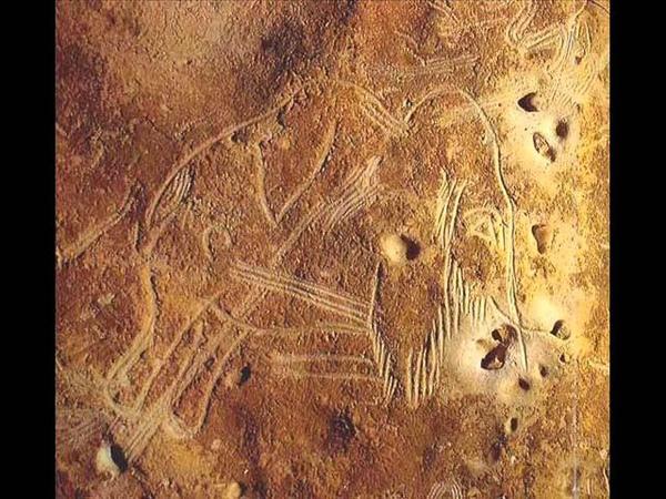 Пещерная живопись Не мамонтом единым жил человек