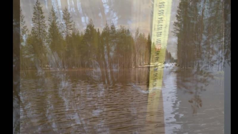 Весенний паводок на подъезде к клюквенной плантации 2020 Архангельская область