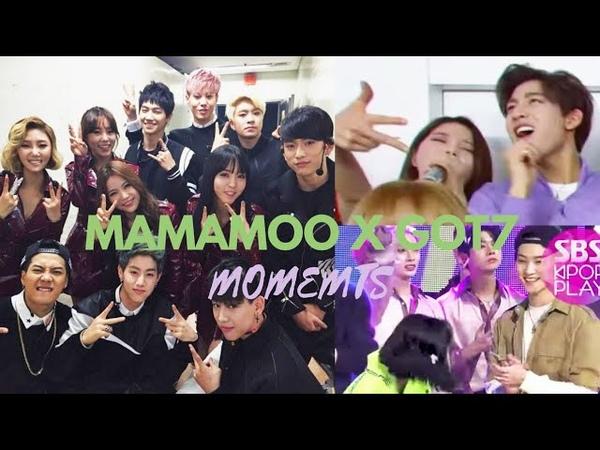MAMAMOO 마마무 x Boygroups Edition GOT7 갓세븐