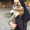 Aysha Muslimova