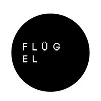 Логотип FL GEL