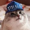 Gleb Kot
