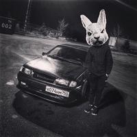 Фотография профиля Siberian Bear ВКонтакте