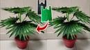 DIY Tanaman Hias Palem Kipas dari Plastik Kresek Fan Palm Plant from Plastic Bag