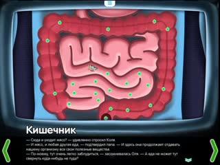 Кишечник. Строение кишечника - познавательный мультфильм для детей.mp4