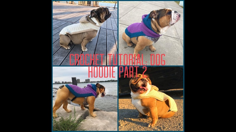 Crochet Tutorial Dog Hoodie Part 2