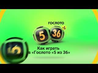 Как играть в Гослото 5 из 36